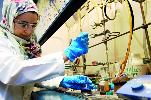 QNRF awards 19 grants for TAMUQ research activities