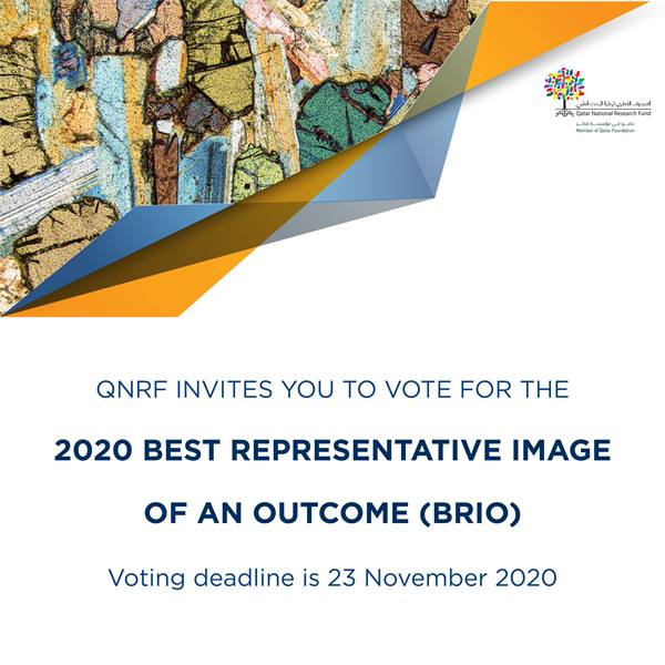 Vote for the 2020 Best Representative Image of an Outcome (BRIO)
