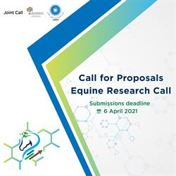 Launch of the Equine Research Call